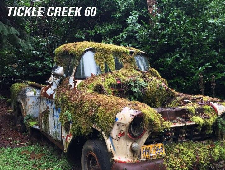 tickle_creek60