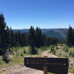 timberline_town_04